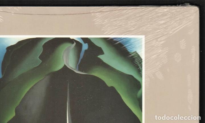 Libros: GEORGIA O´KEEFE NATURALEZAS ÍNTIMAS CATÁLOGO EXPOSICIÓN FUNDAC. JUAN MARCH 2002 PINTURA PLASTIFICADO - Foto 10 - 186071928