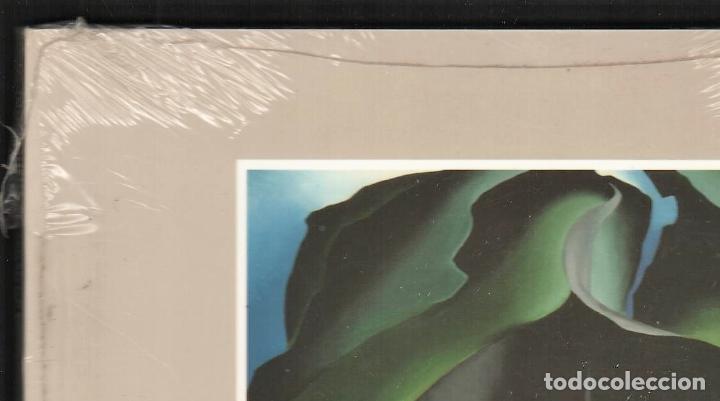Libros: GEORGIA O´KEEFE NATURALEZAS ÍNTIMAS CATÁLOGO EXPOSICIÓN FUNDAC. JUAN MARCH 2002 PINTURA PLASTIFICADO - Foto 11 - 186071928
