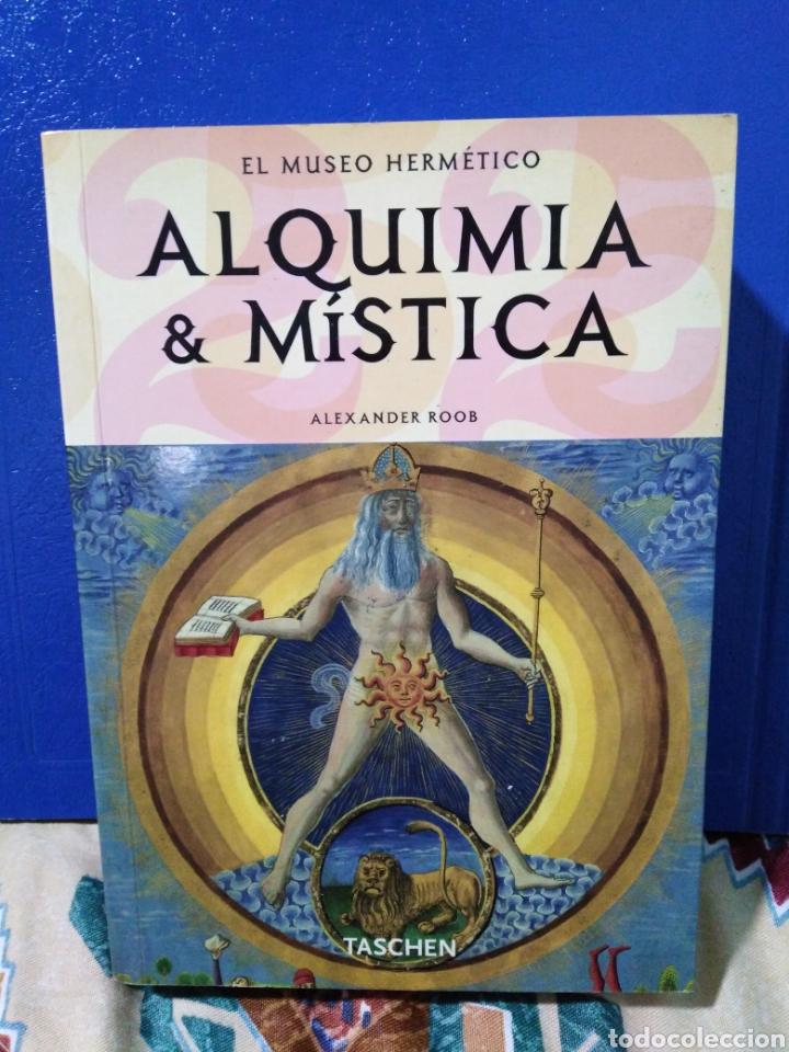 ALQUIMISTA & MÍSTICA EL MUSEO HERMÉTICO (Libros Nuevos - Bellas Artes, ocio y coleccionismo - Pintura)