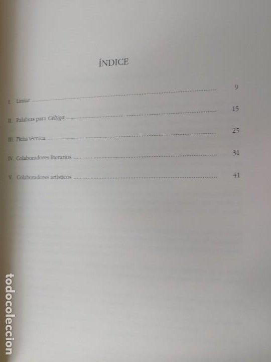 Libros: CÉLTIGA Bos Aires. Xunta Galicia. Edición facsimil - Foto 4 - 197910856