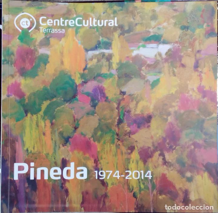 ANTONIO PINEDA SALMERÓN - PINEDA 40 ANYS- (Libros Nuevos - Bellas Artes, ocio y coleccionismo - Pintura)