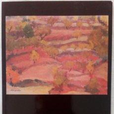 Libros: ANTONIO PINEDA SALMERÓN - LIBRO PINEDA-. Lote 205794907