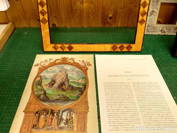 Libros: Mina, Dibujo de Hans Holbein, Splendor Solis Ediciones Moleiro 2011 montaje cuadro - Foto 4 - 212723421