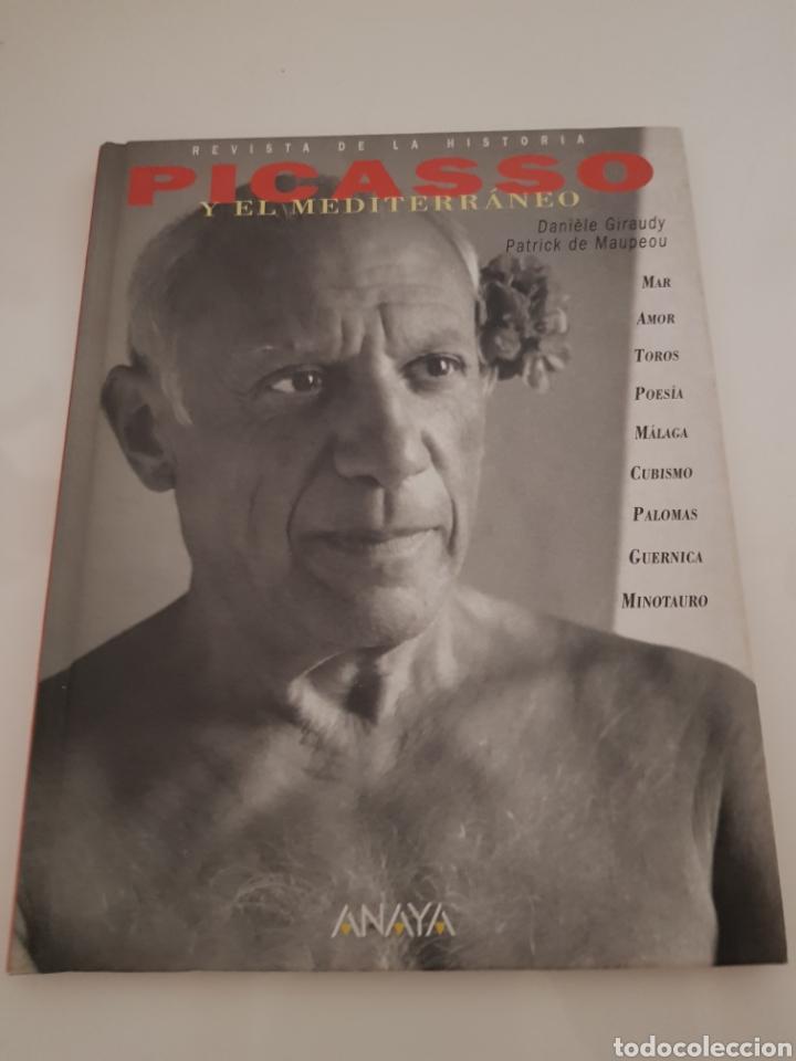 PICASSO Y EL MEDITERRÁNEO EDICION ANAYA (Libros Nuevos - Bellas Artes, ocio y coleccionismo - Pintura)