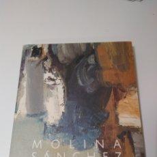 Libri: MOLINA SÁNCHEZ Y LA NEOFIGURACIÓN. Lote 251007825