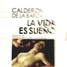 Libros: VIDA ES SUE¥O 11 CAST DIDA 1 CASTALIA. Lote 104281088