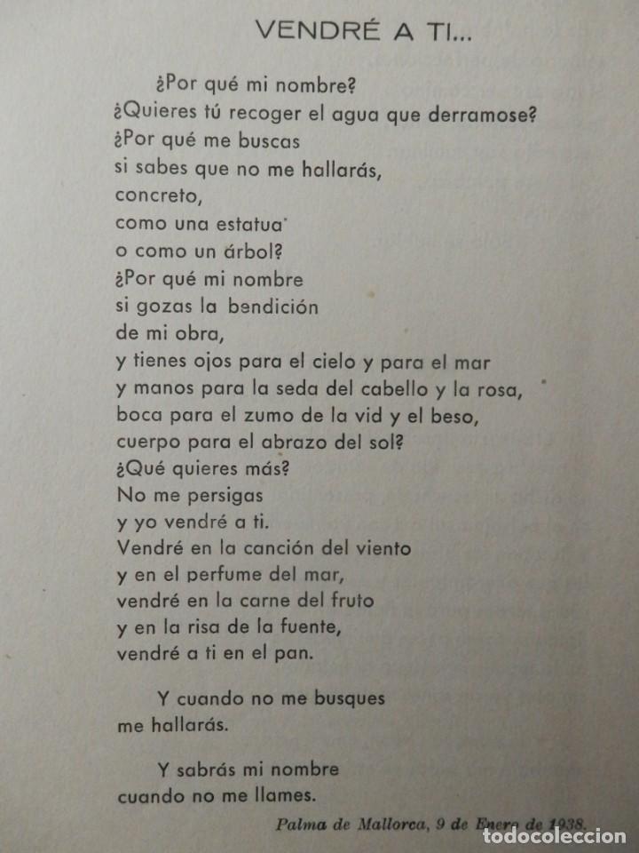 Libros: COMO EL CIERVO CORRE HERIDO, DE CELIA VIÑAS OLIVELLA. ALMERIA 1955 - Foto 2 - 160389010