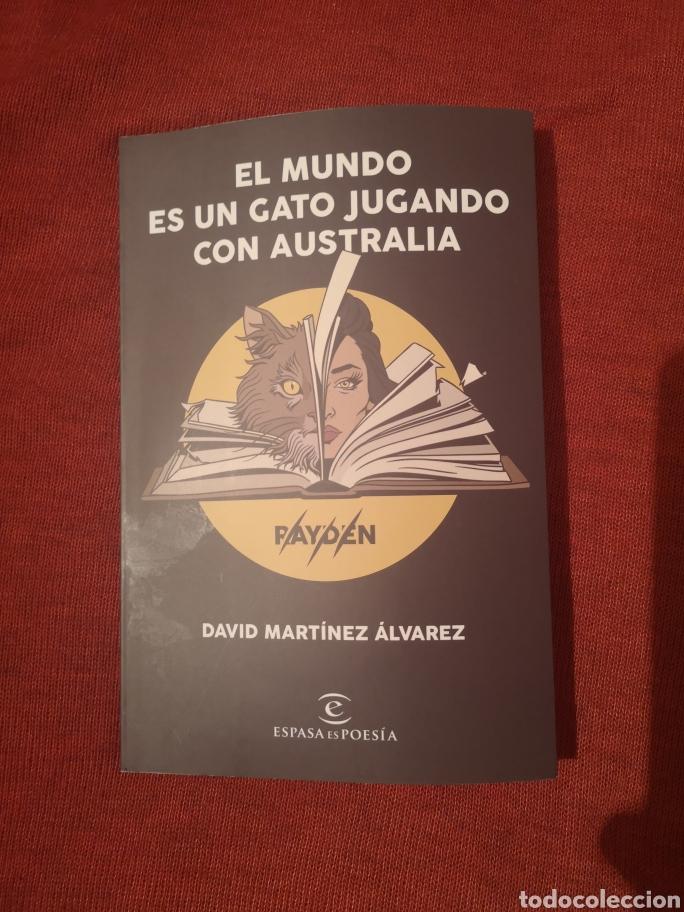 LIQUIDACIÓN TOTAL LIBRO RAYDEN EL MUNDO ES UN GATO JUGANDO CON AUSTRALIA, A3BANDAS (Libros Nuevos - Literatura - Poesía)