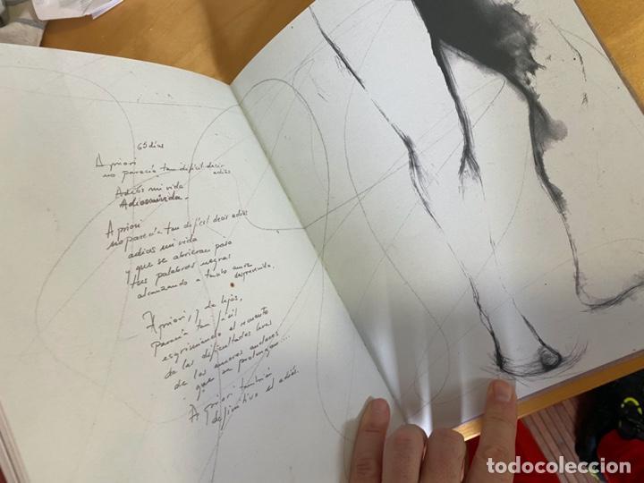 Libros: LA CHULA DE DIOS. ALGO DE JAZZ. ÁNGELA F. AYENSA. LIBRO DE POESÍA ILUSTRADO. MUY BONITO. - Foto 2 - 200532566