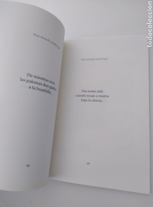 """Libros: Libro en Cantabro. """"Cancia La Cabaña Vividora"""". - Foto 4 - 210573438"""