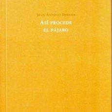 Libros: ASÍ PROCEDE EL PÁJARO, JUAN ANTONIO BERNIER (EJEMPLAR DEDICADO). Lote 215512548