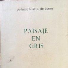 Libros: PAISAJE EN GRIS. Lote 221807493