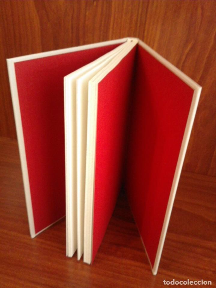 Libros: Albanta San Román & Carla Palmer - Una primavera permanente - Zenith 2019 (1ª Edición) - Nuevo - Foto 3 - 222079157