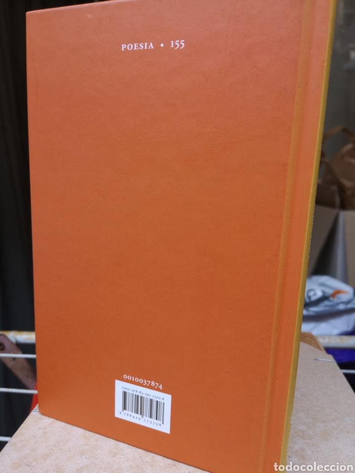 Libros: MIQUEL MARTÍ I POL. Veu incessant. Ed. Roger CANADELL, Montse Caralt. 1a ed nov. 2013 - Foto 2 - 227845275