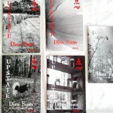Libros: UPSTATE DIM SUM - HAIKU GROUP. Lote 239971235