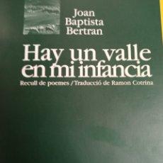 Libros: HAY UN VALLE EN MI INFANCIA. Lote 242306655