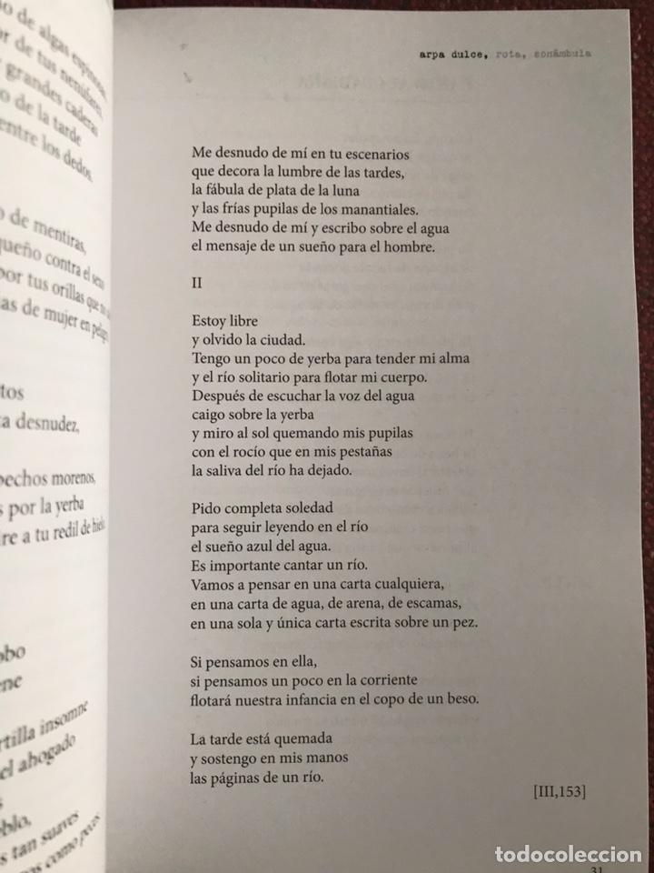 Libros: Arpa rota, dulce, sonámbula. Manuel Pacheco. Extremadura. - Foto 2 - 243191805