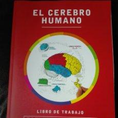 Libros: EL CEREBRO HUMANO. LIBRO DE TRABAJO MARIAN C. DIAMOND | A B SCHEIBEL LAWRENCE M ELSON LIBRO NUEVO. Lote 198141587