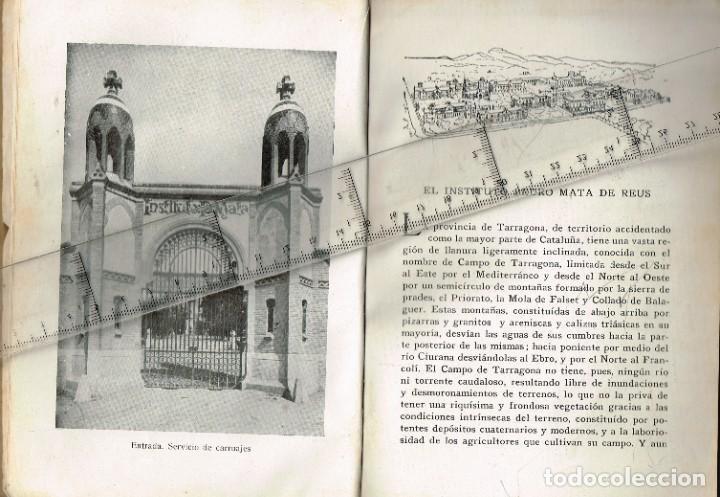 """Libros: 1928 1929 INSTITUTO PEDRO MATA (REUS - TARRAGONA) """"PERE MATA"""" Libro de presentación - Foto 5 - 243403000"""