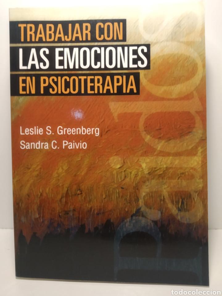 Libros: Sandra C. Paivioy Greenberg. Trabajar con las emociones en psicoterapia Psicología Psiquiatría - Foto 2 - 286755198