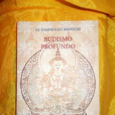 Libros: BUDISMO PROFUNDO. S.E. KYABYE KALU RIMPOCHE. EDICIONES CHABSEL. Lote 56724400