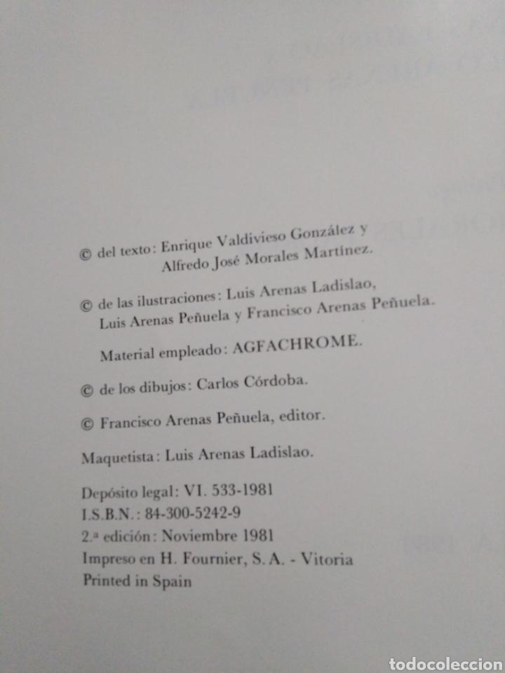 Libros: Sevilla oculta, monasterios y conventos de clausura - Foto 5 - 222263583