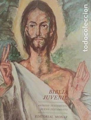 Libros: BIBLIA JUVENIL - TOMO 1 ANTIGUO TESTAMENTO. TOMO 2 NUEVO TESTAMENTO - EXCELENTE ESTADO - Foto 3 - 265668644