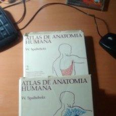 Libros: ATLAS DE ANATOMIA HUMANA. Lote 104124359