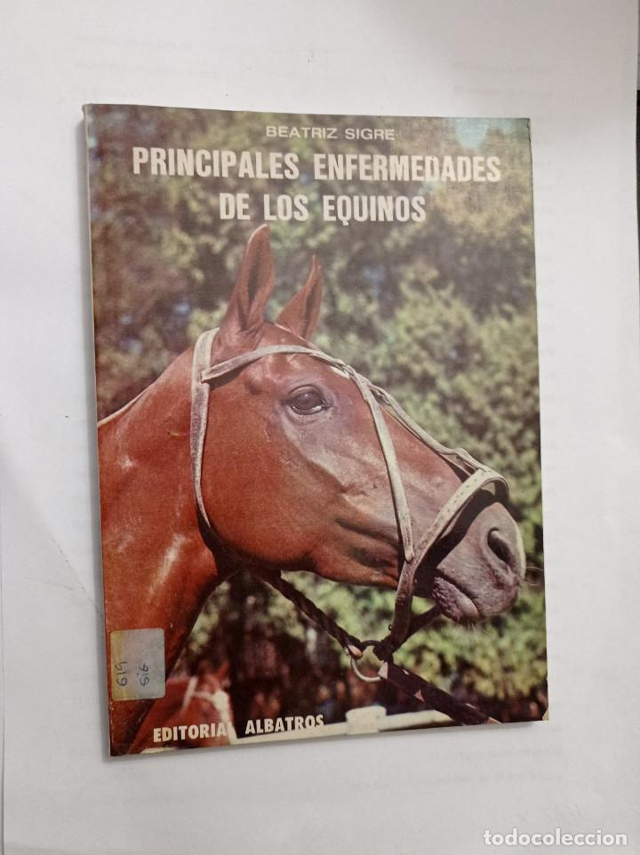 PRINCIPALES ENFERMEDADES DE LOS EQUINOS / POR: SIGRE, BEATRÍZ (Libros Nuevos - Ocio - Salud y Dietas)