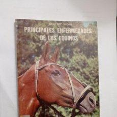 Libros: PRINCIPALES ENFERMEDADES DE LOS EQUINOS / POR: SIGRE, BEATRÍZ. Lote 232018155