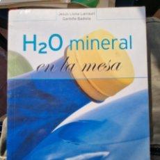 Libros: MINERAL EN LA MESA. LLONA BADIOLA. Lote 293460328