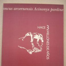 Libri di seconda mano: YACIMIENTO DE LAS HIGUERUELAS. HACE 3 MILLONES DE AÑOS. 2003. 54 PP. MUY ILUSTRADO.. Lote 38353407