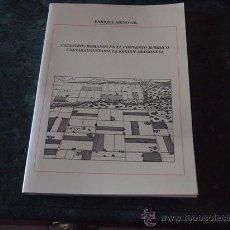 Libros de segunda mano: ARIÑO, CATASTROS ROMANOS EN EL CONVENTO JURÍDICO CAESARAUGUSTANO. ZARAGOZA 1990. Lote 39341065