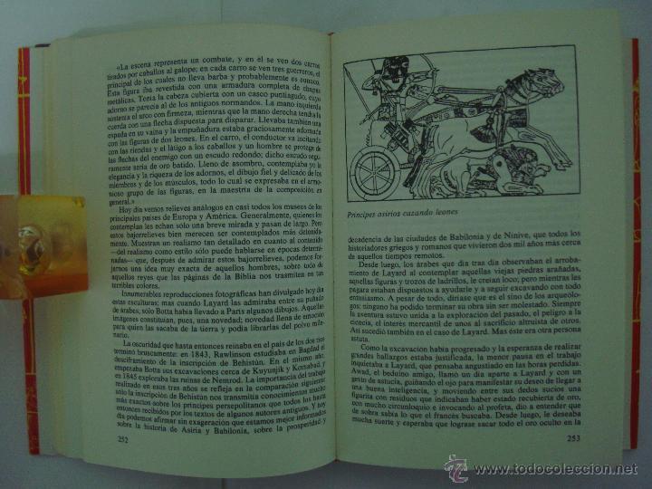 Libros de segunda mano: C.W. CERAM. DIOSES, TUMBAS Y SABIOS. 1982. OBRA ILUSTRADA. ARQUEOLOGIA. - Foto 3 - 47382379