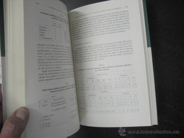 Libros de segunda mano: el yacimiento de la cueva de urratxa III orozko bizkaia, . Muñoz Salvatierra, arqueologia - Foto 4 - 51369184
