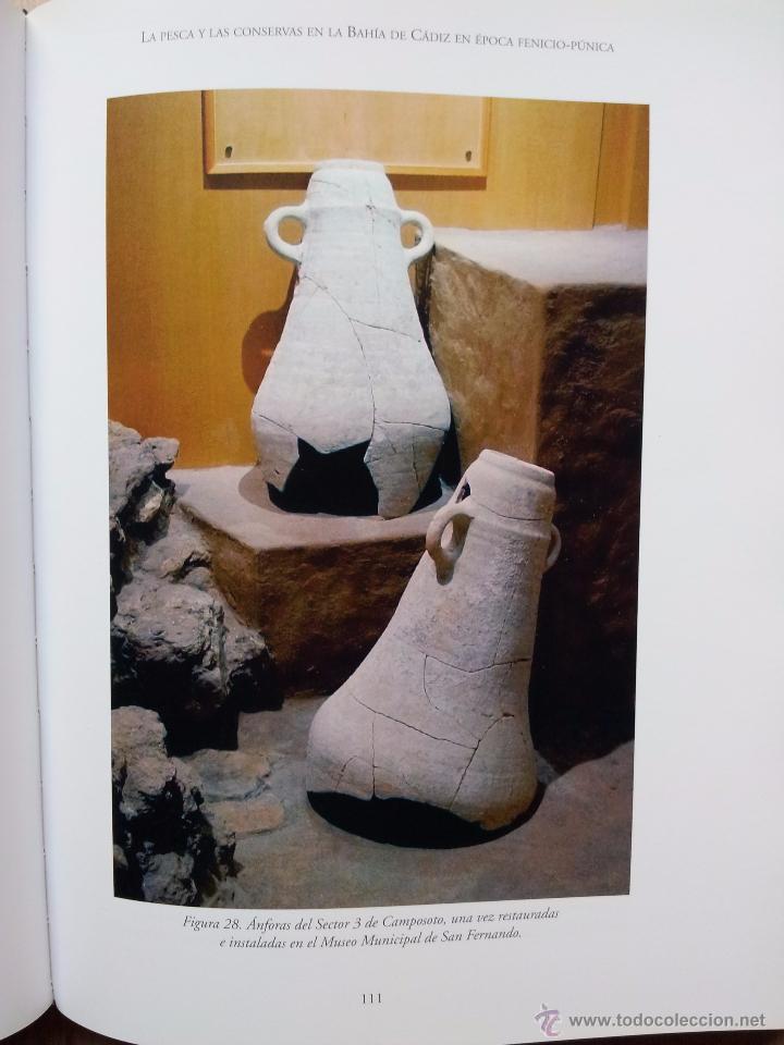 Libros de segunda mano: ARQUEOLOGIA DE LA PESCA EN EL ESTRECHO DE GIBRALTAR - D. BERNAL CASASOLA - Foto 3 - 54169364