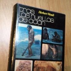 Libros de segunda mano: TRAS LAS HUELLAS DE ADAN - HERBERT WENDT ED. ESPECIAL DISCOLIBRO ED. NOGUER 1973. Lote 86664052