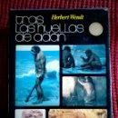 Libros de segunda mano: TRAS LAS HUELLAS DE ADÁN - HERBERT WENDT - ED. NOGUER 1973 - 563 PÁGINAS. Lote 116762946