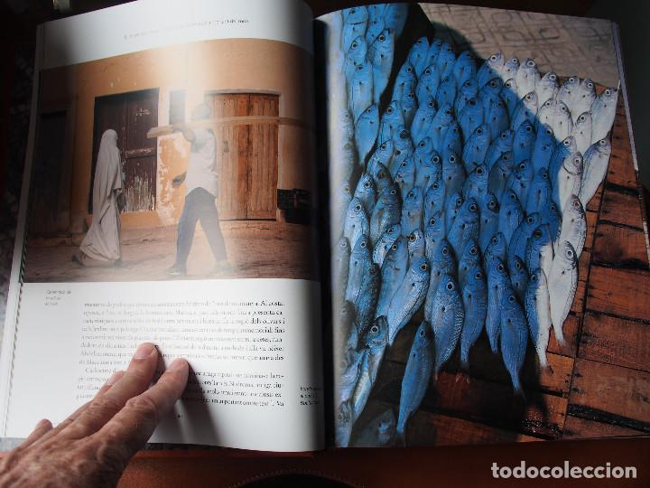 Libros de segunda mano: Algèria - Patrimoni Cultural i Natural - Arqueología - Historia antigua - World Heritage - Foto 5 - 120540899