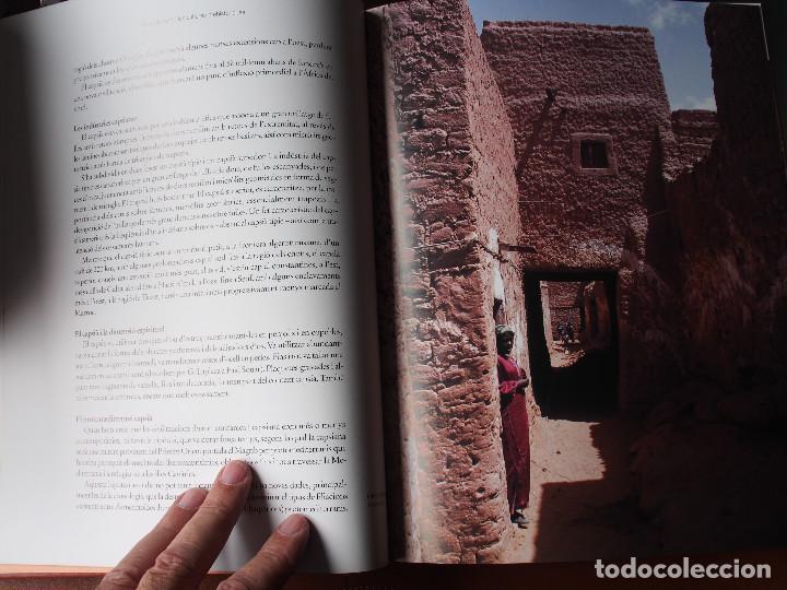 Libros de segunda mano: Algèria - Patrimoni Cultural i Natural - Arqueología - Historia antigua - World Heritage - Foto 7 - 120540899