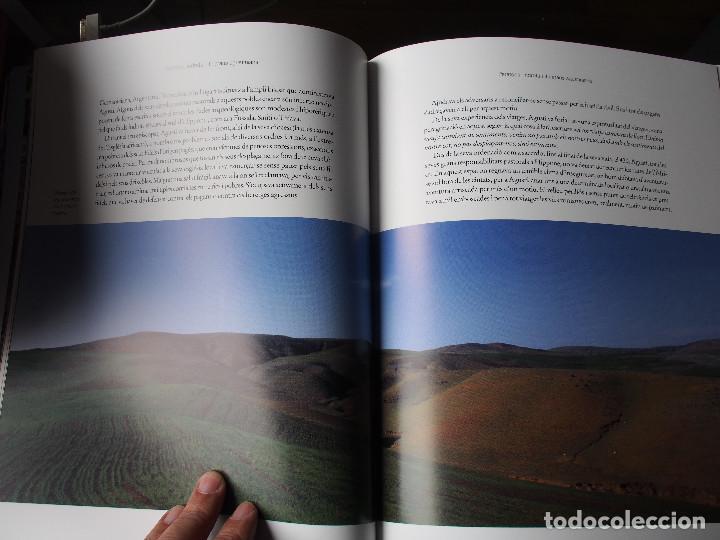 Libros de segunda mano: Algèria - Patrimoni Cultural i Natural - Arqueología - Historia antigua - World Heritage - Foto 12 - 120540899