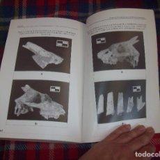 Libros de segunda mano: COLONITZACIÓ HUMANA EN AMBIENTS INSULARS. LA COVA DE SA BASSA.EXCAVACIÓN ARQUEOLÓGICA COVAL SIMÓ.... Lote 123285995