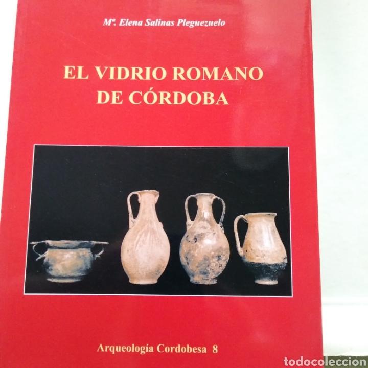 EL VIDRIO ROMANO DE CORDOBA. M. ELENA SALINAS PLEGUEZUELO. UNIVERSIDAD DE CORDOBA. 2003. (Libros de Segunda Mano - Ciencias, Manuales y Oficios - Arqueología)