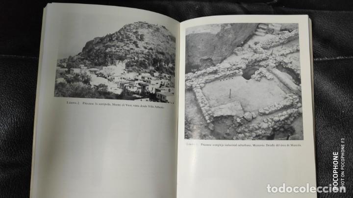 Libros de segunda mano: EL ALBA DE LA MAGNA GRECIA ( PITECUSA Y LAS PRIMERAS COLONIAS GRIEGAS DE OCCIDENTE ) - Foto 3 - 143731818