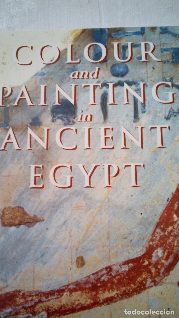 Libros de segunda mano: CTC - COLOUR AND PAINTING IN ANCIENT EGYPT - W.V. DAVIES - MUSEO BRITÁNICO - IDIOMA INGLÉS - Foto 1 - 147693950