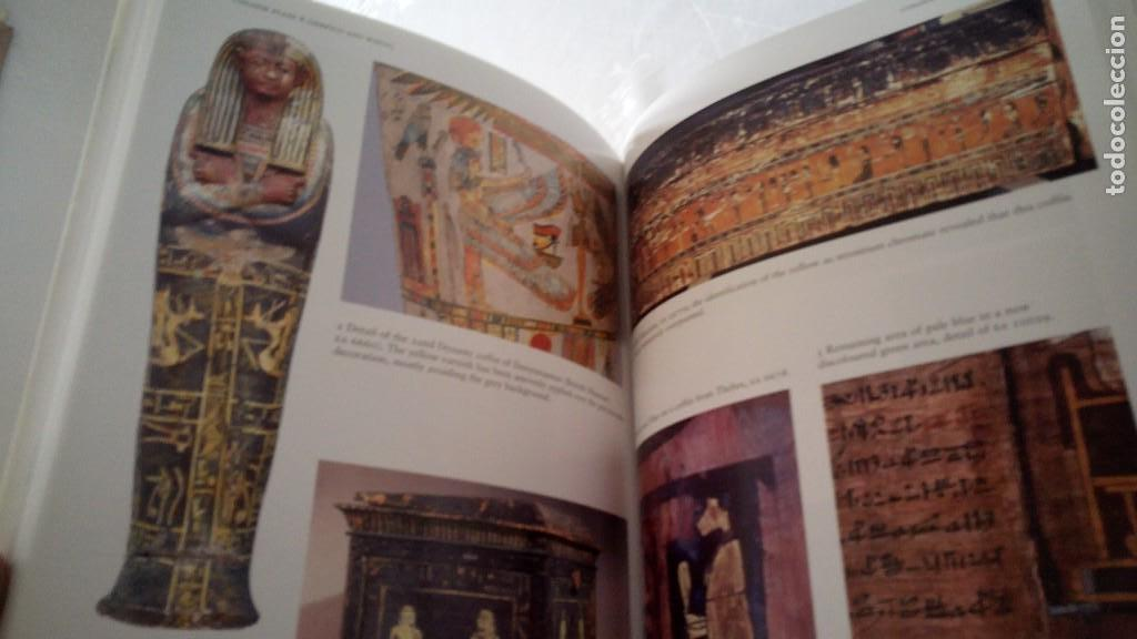 Libros de segunda mano: CTC - COLOUR AND PAINTING IN ANCIENT EGYPT - W.V. DAVIES - MUSEO BRITÁNICO - IDIOMA INGLÉS - Foto 6 - 147693950