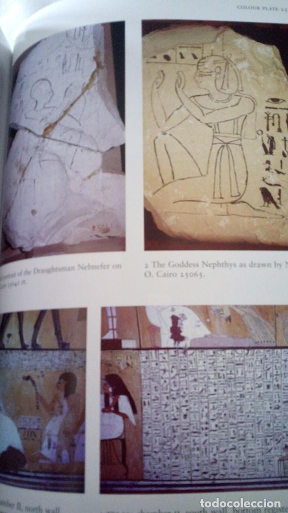 Libros de segunda mano: CTC - COLOUR AND PAINTING IN ANCIENT EGYPT - W.V. DAVIES - MUSEO BRITÁNICO - IDIOMA INGLÉS - Foto 12 - 147693950
