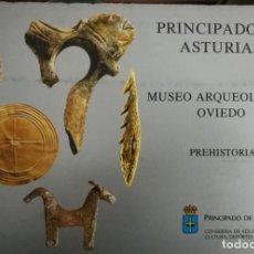 Libros de segunda mano: MUSEO ARQUEOLÓGICO OVIEDO - 72 DISPOSITIVAS - PREHISTORIA. Lote 148049522