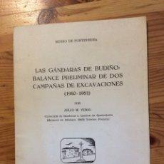 Libros de segunda mano: LAS GANDARAS DE BUDIÑO BALANCE PRELIMINAR DE DOS CAMPAÑAS DE EXCAVACIONES MUSEO PONTEVEDRA 1982. Lote 149469130
