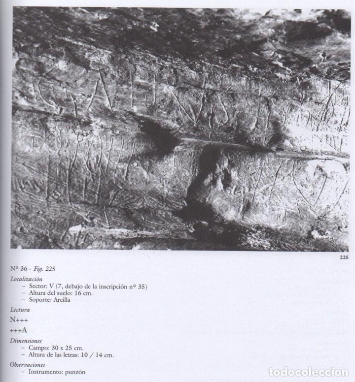 Libros de segunda mano: LA CUEVA DE LA GRIEGA DE PEDRAZA (SEGOVIA) - Foto 7 - 151537770